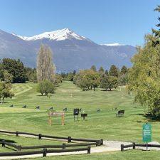 para-el-carrusel-del-golf5